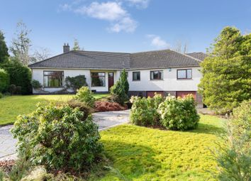 Thumbnail 4 bed detached bungalow for sale in 7 Thorn Avenue, Thorntonhall