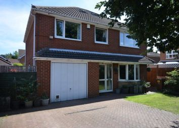 Thumbnail 4 bed detached house to rent in Archer Road, Waltham, Grimsby