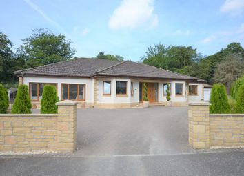 Thumbnail 4 bed detached bungalow for sale in Crosshouse, Kilmarnock