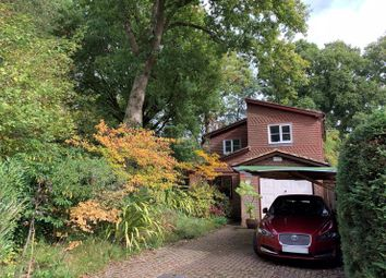 Thumbnail 3 bed detached house for sale in Slip Of Wood, Cranleigh