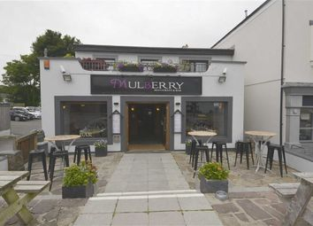 Thumbnail Commercial property to let in Brewery Terrace, Saundersfoot, Pembrokeshire