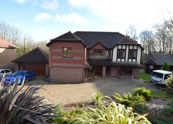 Thumbnail 5 bed detached house for sale in St. Kitts Close, St Leonards-On-Sea, East Sussex