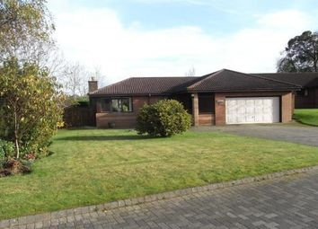 Thumbnail 4 bed detached bungalow to rent in Lethame Gardens, Strathaven