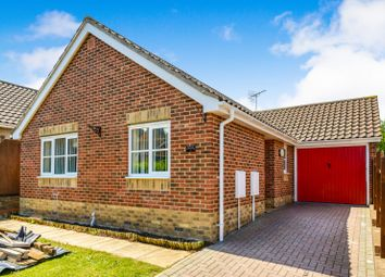 Thumbnail 3 bed bungalow to rent in Brewster Close, Halstead