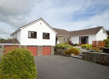 Thumbnail 5 bed property for sale in Porthyrhyd, Carmarthen