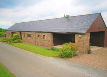 Thumbnail 4 bedroom detached bungalow for sale in Perth