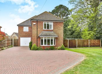 Thumbnail 4 bedroom detached house for sale in Old Road, Acle, Norwich