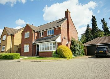 Thumbnail 4 bed detached house for sale in Roman Rise, Sawbridgeworth, Hertfordshire