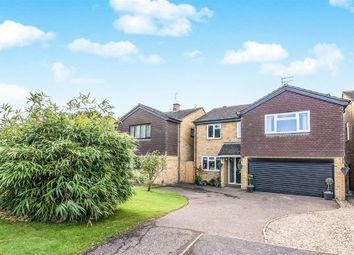 Thumbnail 4 bedroom detached house for sale in Oak Grove, Hertford