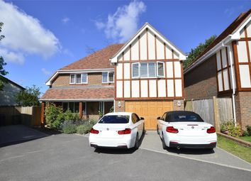 Thumbnail 4 bed detached house for sale in Campkin Gardens, St Leonards-On-Sea, East Sussex