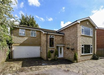 Thumbnail 4 bed detached house for sale in Chestnut Walk, Woodford Green, Essex
