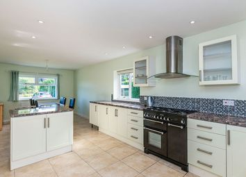 Thumbnail 4 bed semi-detached house to rent in Newport Road, Eccleshall, Stafford
