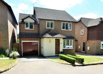 Thumbnail 4 bed detached house for sale in Furse Close, Camberley, Surrey