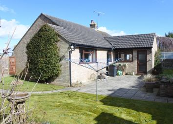 Thumbnail 3 bed detached bungalow for sale in Carent Close, Marnhull, Sturminster Newton