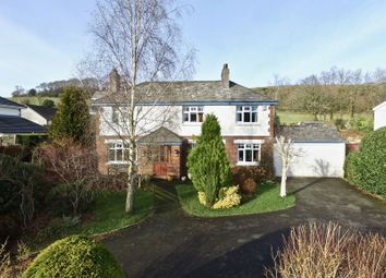 Thumbnail 4 bed detached house for sale in North Road, Lifton