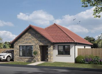 Thumbnail 3 bed detached bungalow for sale in The Avenue, Lochgelly