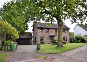 Thumbnail 4 bed detached house for sale in The Grove, Billericay