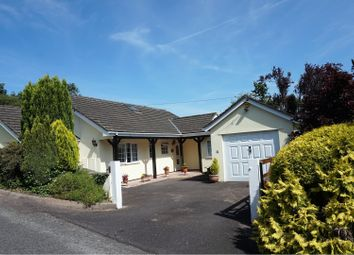 Thumbnail 4 bedroom detached house for sale in Castlebar Close, Tiverton