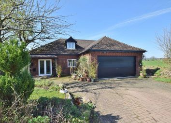 Thumbnail 4 bed detached bungalow for sale in How Caple, Hereford