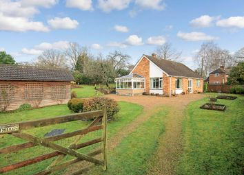 Thumbnail 2 bed detached bungalow for sale in Ashton Lane, Bishops Waltham, Southampton