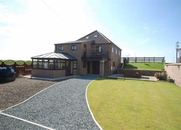Thumbnail 4 bed detached house for sale in Main Street, Blacktoft, Goole