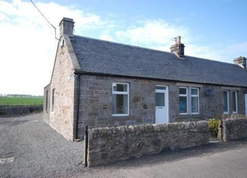 Thumbnail 3 bed semi-detached house to rent in East Pitkierie Farm Cottage, Anstruther, Fife