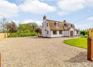 Thumbnail 5 bed detached house to rent in South Road, Abington, Cambridge