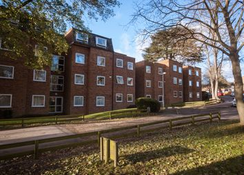2 bed flat to rent in Briardale, Ware SG12