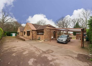 Thumbnail 6 bed detached bungalow for sale in Mount Pleasant Lane, Bricket Wood, St. Albans