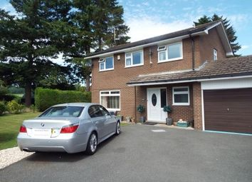 Thumbnail 4 bed detached house for sale in Ffridd Y Gog, Corwen, Denbighshire