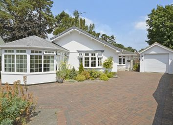 Thumbnail 3 bed detached bungalow for sale in Shirley Close, West Moors, Ferndown