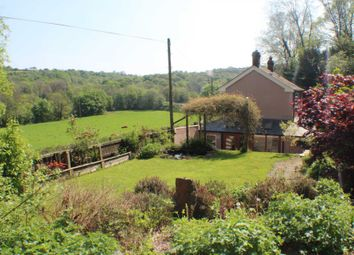 Thumbnail 2 bed detached house for sale in St. Giles, Torrington