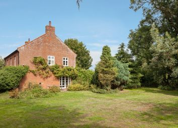 Thumbnail 4 bed detached house for sale in Low Road, Thurlton, Norwich