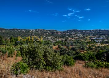 Thumbnail Land for sale in São Romão Area, São Brás De Alportel (Parish), São Brás De Alportel, East Algarve, Portugal