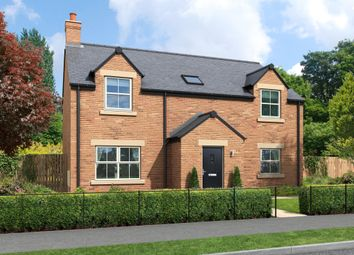 Thumbnail 4 bed detached house for sale in Creighton Place, Holmefield, Embleton
