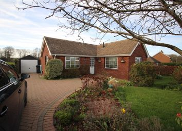 Thumbnail 3 bed detached bungalow for sale in Hardscroft Road, Lower Hardres, Canterbury
