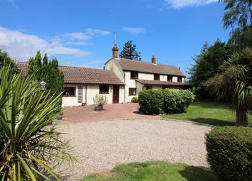 Thumbnail 4 bed detached house for sale in Cess Lane, Martham, Great Yarmouth