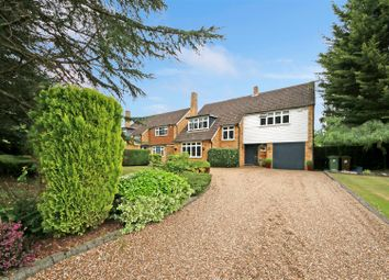 Thumbnail Detached house for sale in The Avenue, Radlett