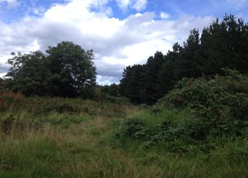 Thumbnail Land for sale in Hunter Avenue, Blyth