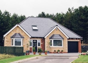 Thumbnail 3 bed detached bungalow for sale in Seghill, Cramlington