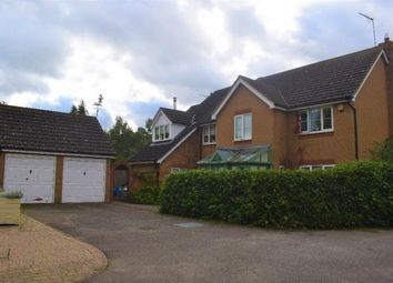 Thumbnail 5 bedroom detached house to rent in Arlington Way, Thetford