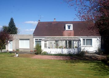 Thumbnail 5 bed detached house for sale in 49A Grahamsdyke Road, Bo'ness