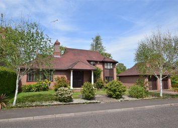 Thumbnail 5 bed detached house for sale in Spring Close, Highwoods, Colchester, Essex