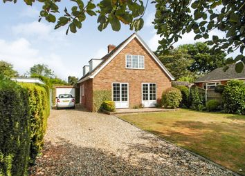 Thumbnail 4 bed detached house for sale in Greenwood Close, Ashwellthorpe, Norwich
