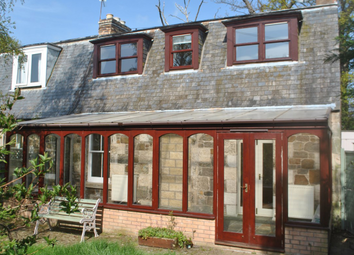 Thumbnail 3 bed semi-detached house to rent in 2 Dovecot, Haddington, East Lothian, 4Ha