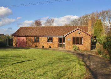 Thumbnail 3 bed bungalow for sale in South End, Goxhill, Barrow-Upon-Humber