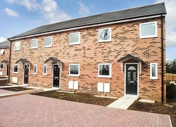 Thumbnail 3 bed terraced house to rent in Oakwood Avenue, Newbiggin-By-The-Sea