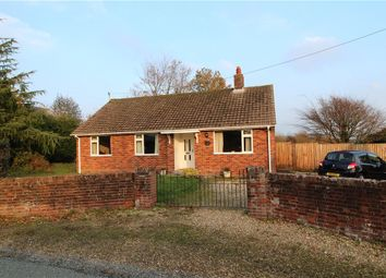 Thumbnail 2 bed detached bungalow for sale in Goldsmith Lane, All Saints, Axminster, Devon