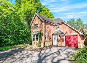 Thumbnail 4 bed detached house to rent in Whitebeam Close, Colden Common, Winchester