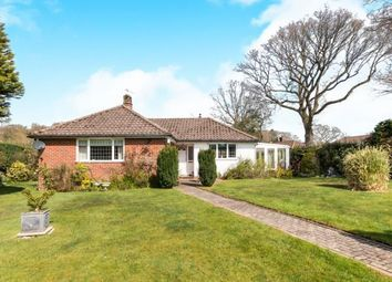 Thumbnail 3 bed bungalow for sale in Haslemere, Surrey